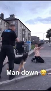 Лучше не спорить с полицейской собакой