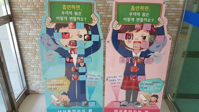 Антитабачная агитация в южнокорейских школах Южная корея, Картинки, Школа, Фотография, Методика