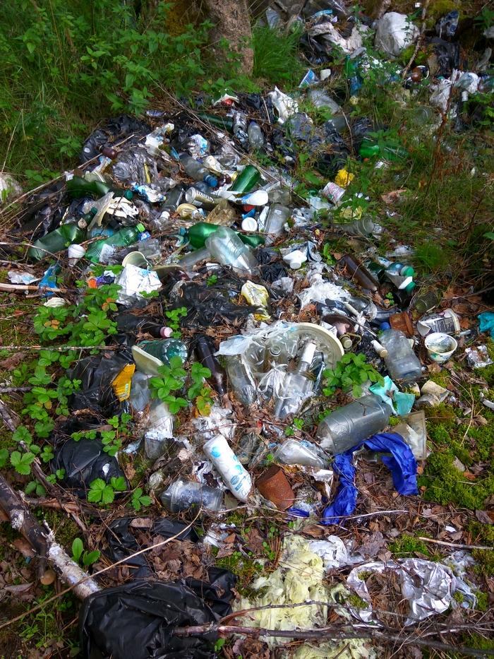 Марафон лесной уборки. Осталось собрать 196 мешков мусора Чистый лес, Уборка, Мусор, Чистомен, Свалка, Охрана природы, Марафон лесной уборки, Длиннопост