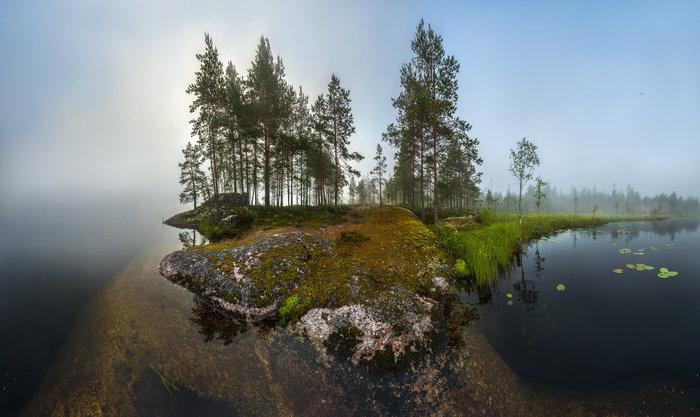 Мир камней и болот Туман, Болото, Сосна, Карелия, Белые ночи, Камень, Скалы, Фьорды, Длиннопост