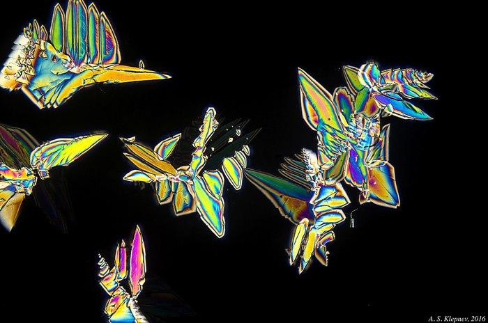 Кристаллы из Coca-Cola Микроскоп, Поляризация, Кристаллы, Длиннопост