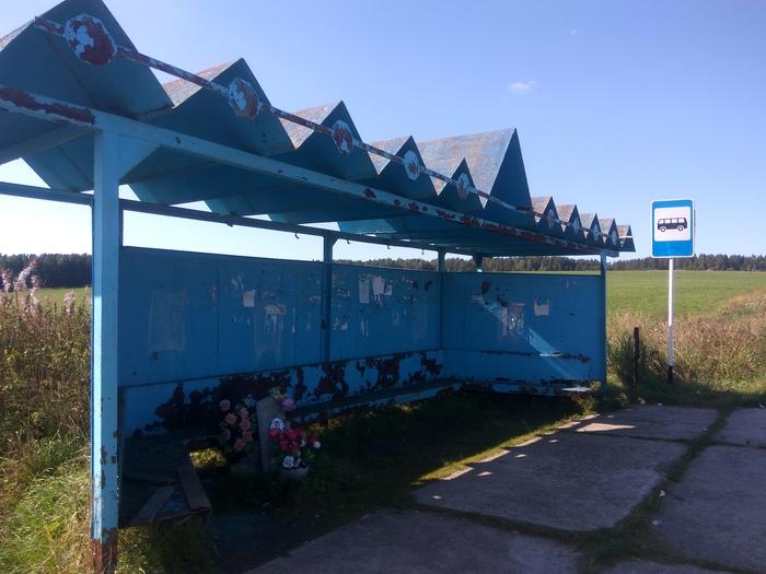 Надгробие на автобусной остановке Остановка, Надгробие, Ненормальность