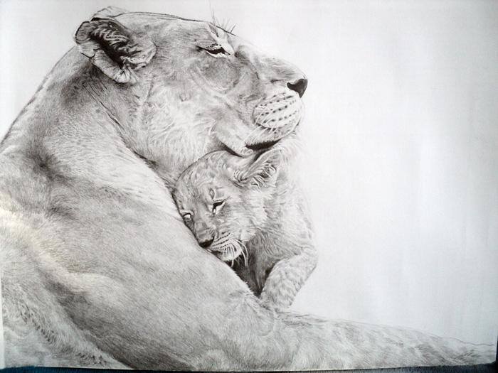 Львица со львёнком Львица, Львята, Рисунок карандашом, Рисунок, Карандаш, Лев, Животные, Анималистика