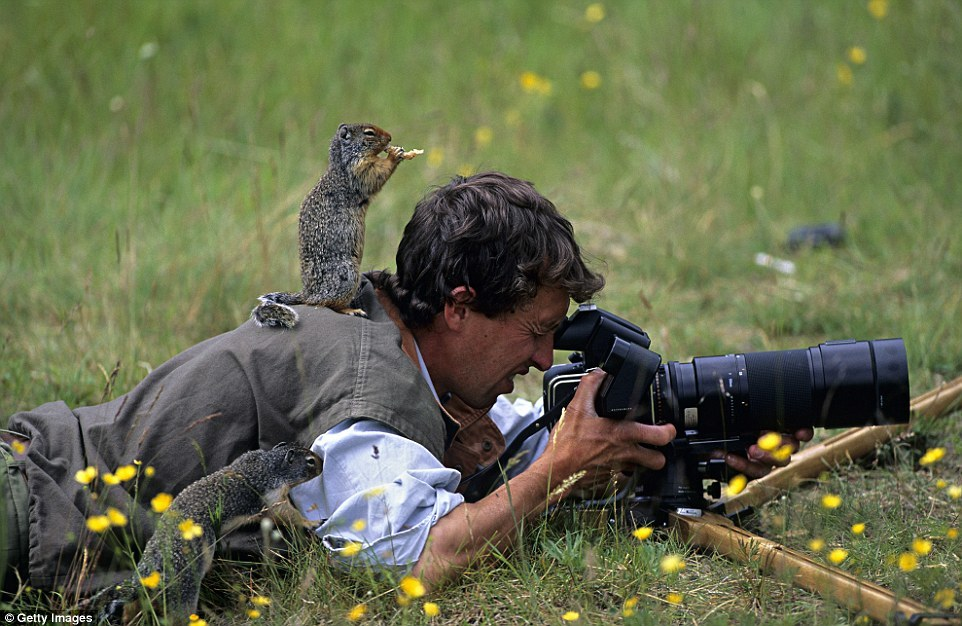 человек с дикой природой картинки этой раме