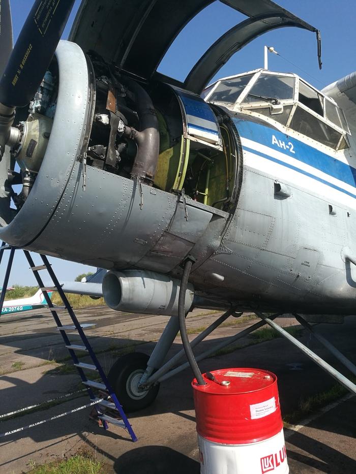 Ан-2. Скромное ТО. Меняем масло и еще чуть чуть. Ан-2, Техническое обслуживание, Авиация, Длиннопост, Ремонт техники