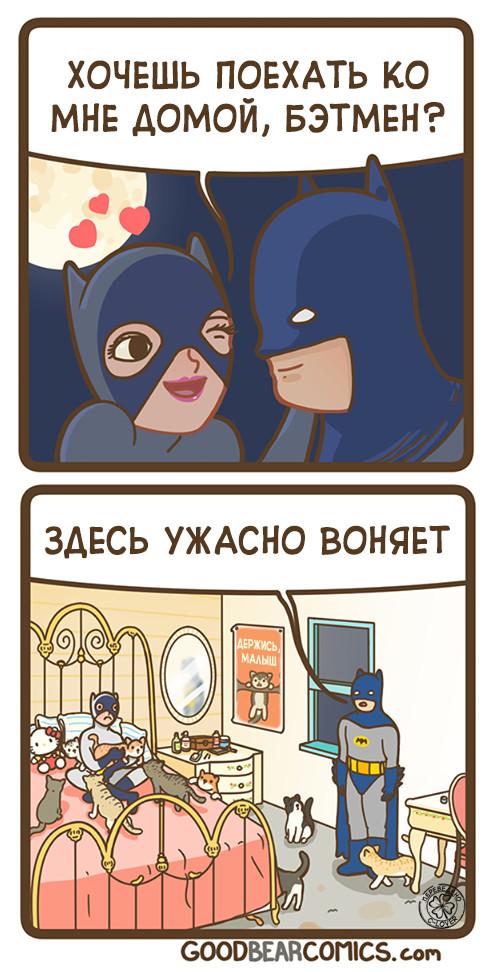 Женщина-кошка. Комиксы, Перевод, Бэтмен, Кот, Goodbearcomics, Перевел сам