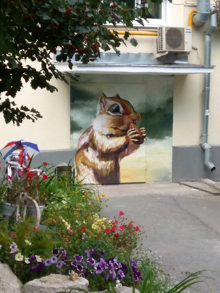 Граффити (так же как и стрит-арт) должны украшать стены, а не уродовать их #70 Граффити, Стрит-Арт, Уличная живопись, Екатеринбург, Бурундук