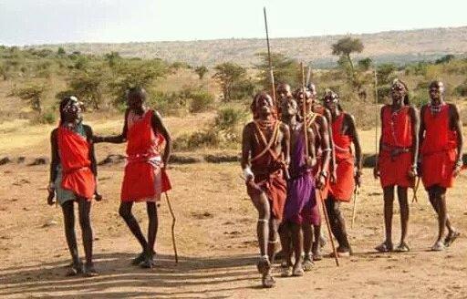 После терактов 11 сентября люди кенийского племени масаи пожертвовали 14 коров правительству США
