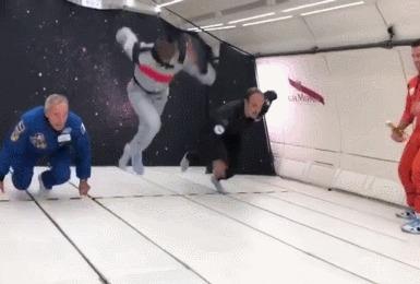 Усэйн Болт и нулевая гравитация Бег, Усейн Болт, Гравитация, Гифка