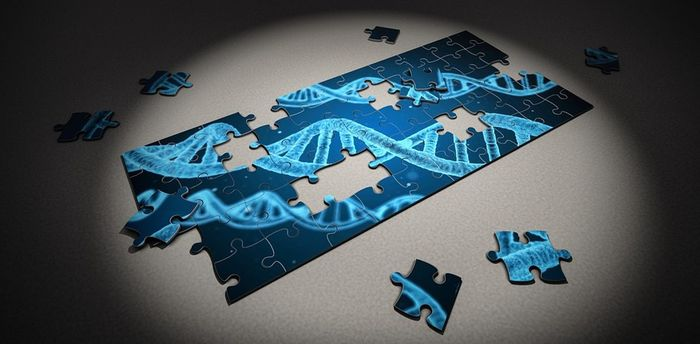 Синдром Хантера: редактирование генома клеток печени – вместо инъекций? Редактирование генома, Искусственные нуклеазы, Синдром Хантера, Клинические испытания, Длиннопост