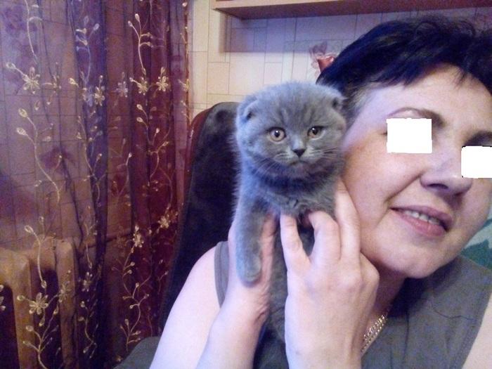 В Кудрово местные жители самостоятельно нашли живодеров, убивших котенка в конце августа Живодеры, Кудрово, Неживой котенок, Санкт-Петербург