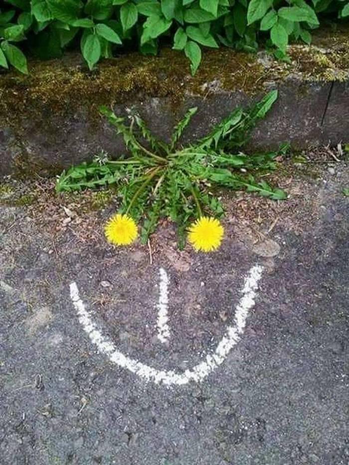 Мир улыбается тебе :)