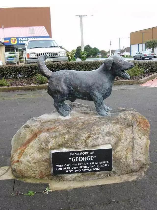 Новости Тольятти - (фото) Скончалась самая большая собака в мире ... | 853x640
