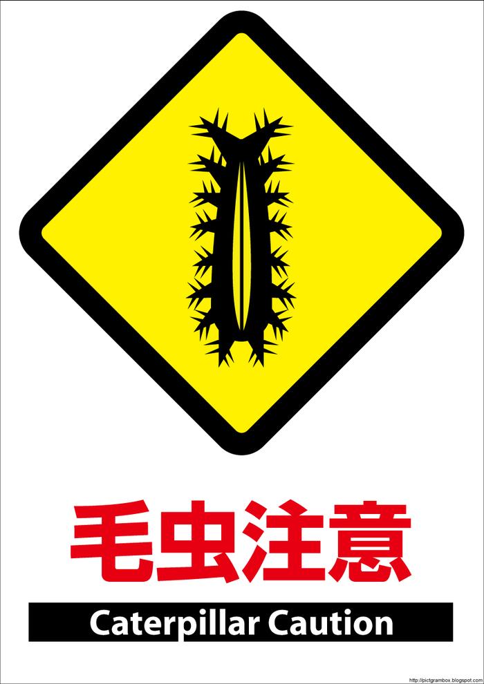 Мохнатые гусеницы кэмушки Япония, Насекомые, Ядовитые гусеницы, Длиннопост, Перевод