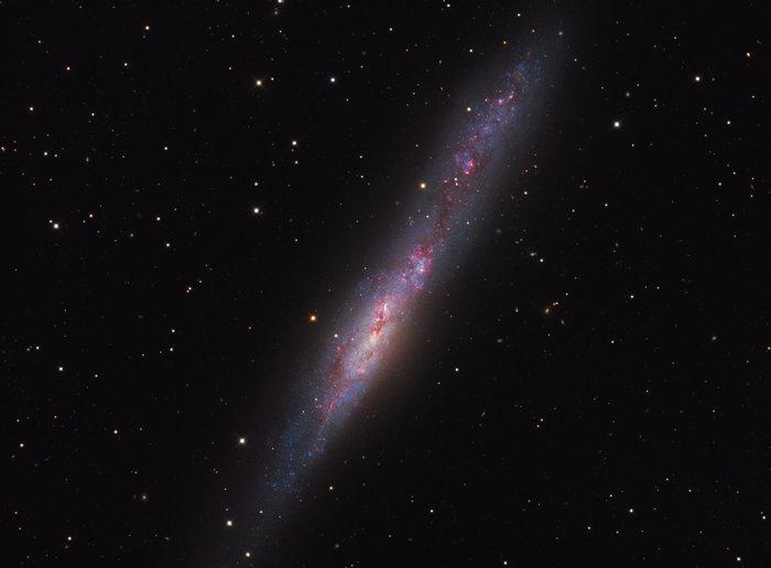 Неправильная галактика NGC 55 Галактика, Большое Магелланово облако, Астрономия, Астрофото, Фотография, Космос, Вселенная, Звёзды