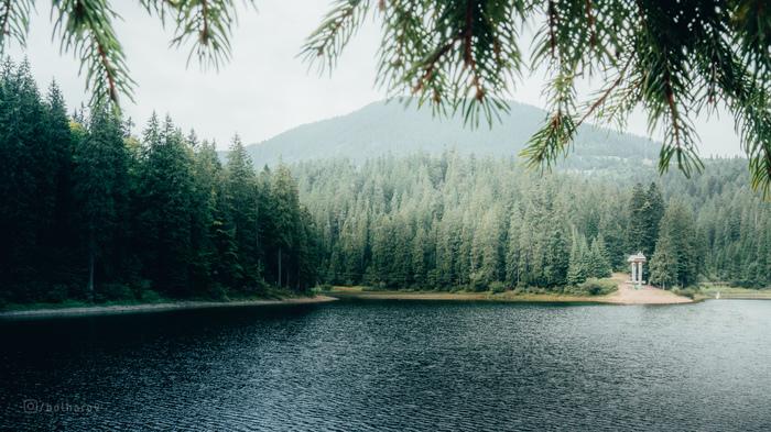 На горном озере... Горы, Природа, Карпаты, Фотография