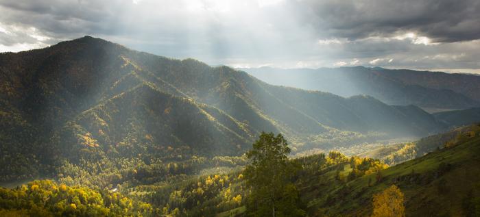Немного осенних красок Алтая. Алтай, Горный Алтай, Осень, Груши, Перекати поле, Фотография