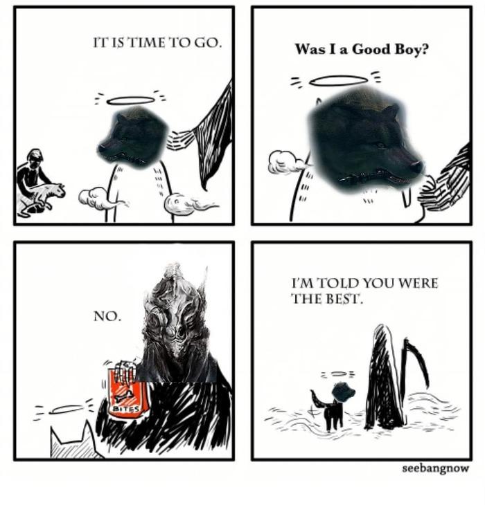 Мне сказали, что я был лучшим. The Great Grey Wolf, Knight Artorias, Dark souls, Хороший мальчик