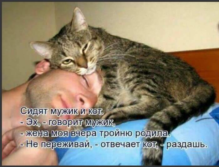 https://cs10.pikabu.ru/post_img/2018/09/22/7/1537611515123363090.png