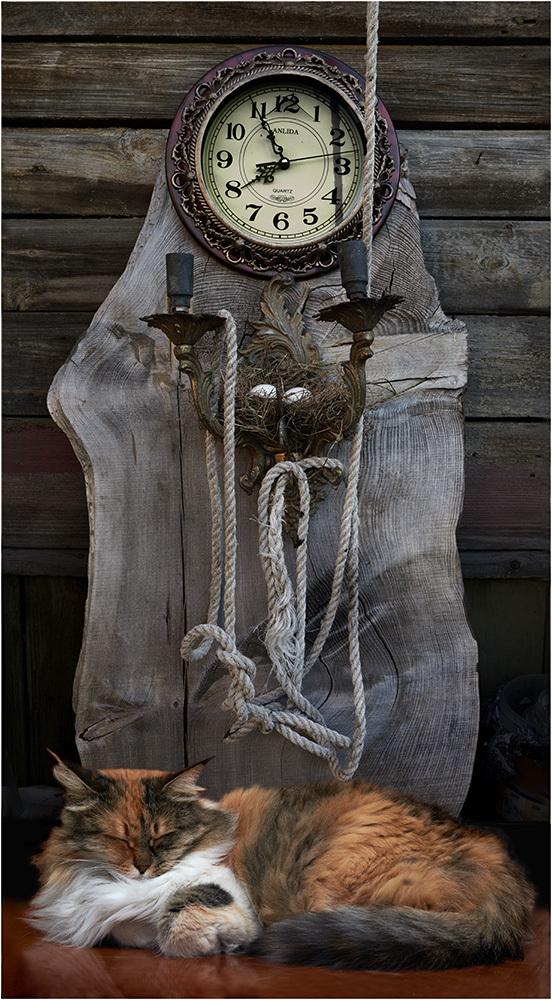 Страж времени Кот, Фотография, Коллаж, Котомафия