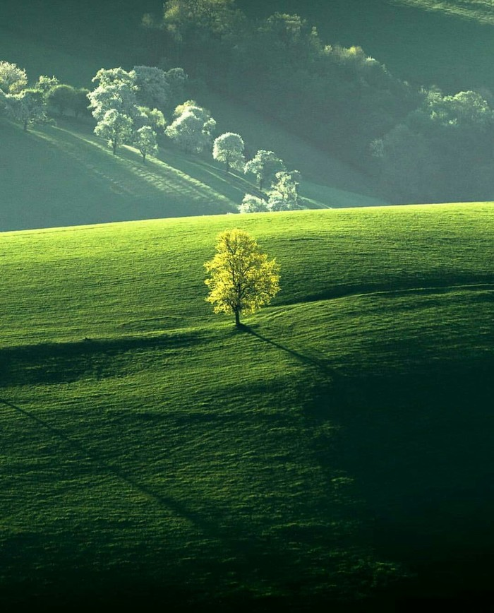 Природа Австрии.