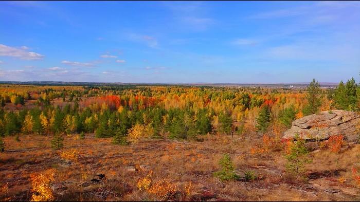 Один день осени... Осень, Природа России, Лес, Пеший туризм, Длиннопост