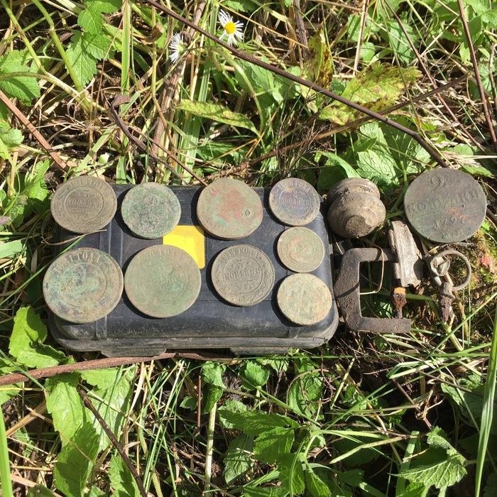 Раскопали старый фундамент дома в лесу Клад, Монета, Металлоискатель, Заброшенное, Хобби, Лес, Природа, Путешествия, Видео, Длиннопост