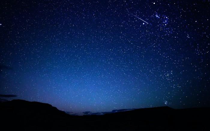 Вы часто смотрите на звезды? Космос, Планеты и звезды, Красота природы, Ночь, Собака