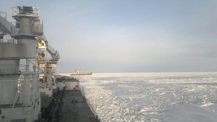 Финский залив и Аргентина. Март. Лед, Аргентина, Финский залив, Март, Холод, Прилив, Моё, Длиннопост