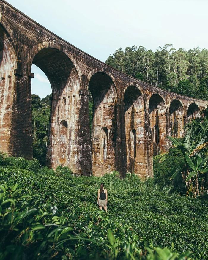 Каменный железнодорожный мост прорезающий джунгли Шри-Ланки. Шри-Ланка, Мост, Фотография, Природа, Красота природы, Красота, Интересное