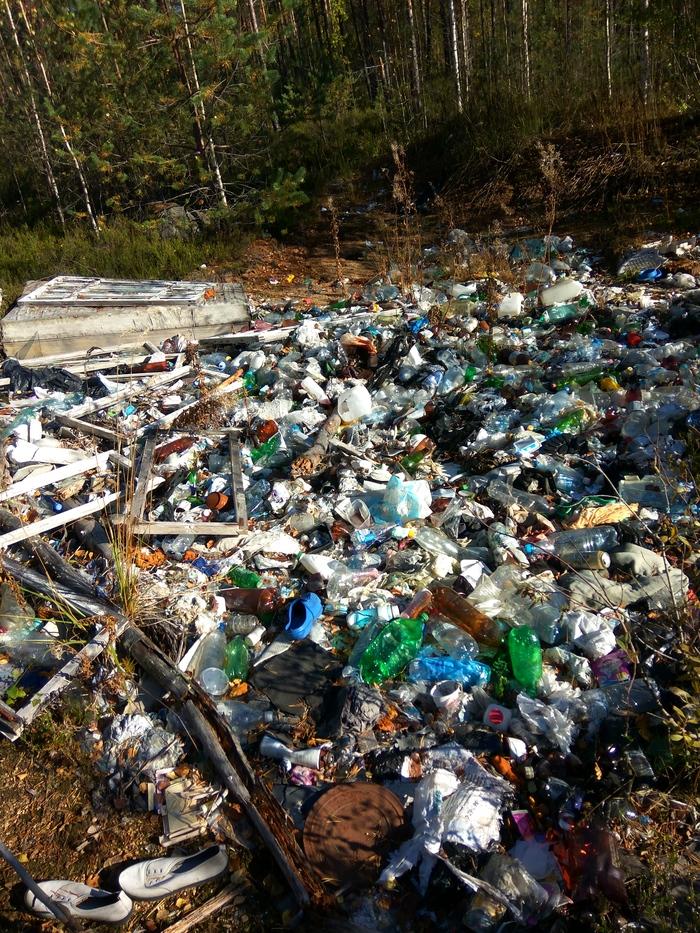Марафон лесной уборки завершён Марафон лесной уборки, Чистый лес, Чистомен, Уборка, Мусор, Свалка, Охрана природы, Длиннопост