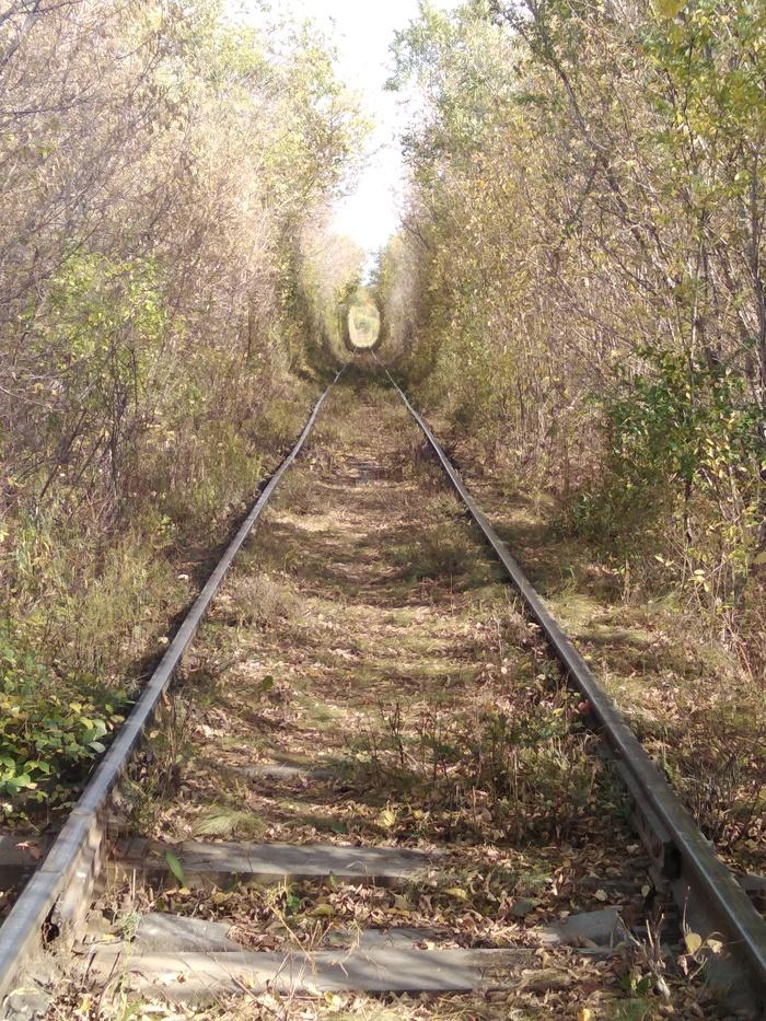 Тоннель Майами. Магнитогорск Тоннель, Осень, Прогулка, Длиннопост