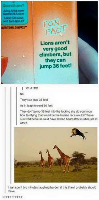 Как прыгают львы Лев, Английский язык, Прыжки в высоту, Прыжки в длину, Мне бы в небо, Юмор, Перевод