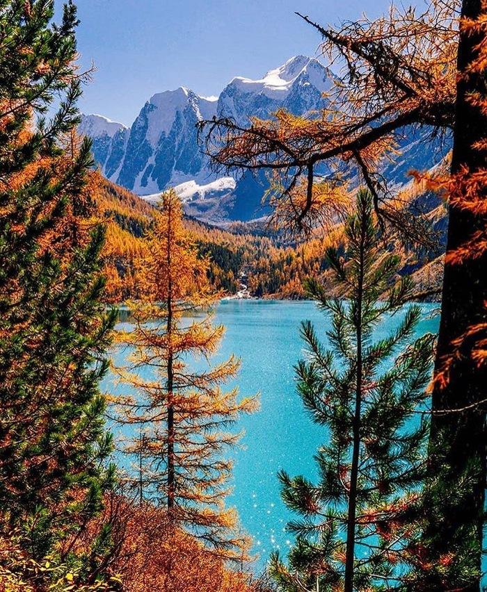 Прекрасной алтайской осени вам в ленту,  пикабушники! Алтай, Горный Алтай, Осень, Instagram, Фотография, Длиннопост