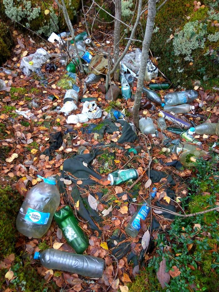 Последняя лесная уборка в сезоне Чистый лес, Чистомен, Уборка, Мусор, Свалка, Охрана природы, Длиннопост