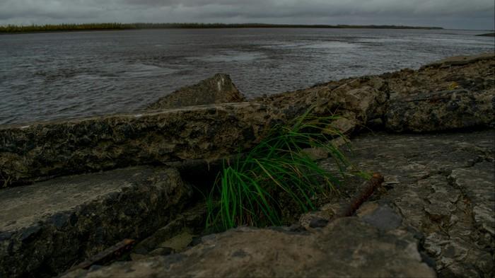 Пасмурно Река, Обь, Сургут, Пасмурно, Nikon