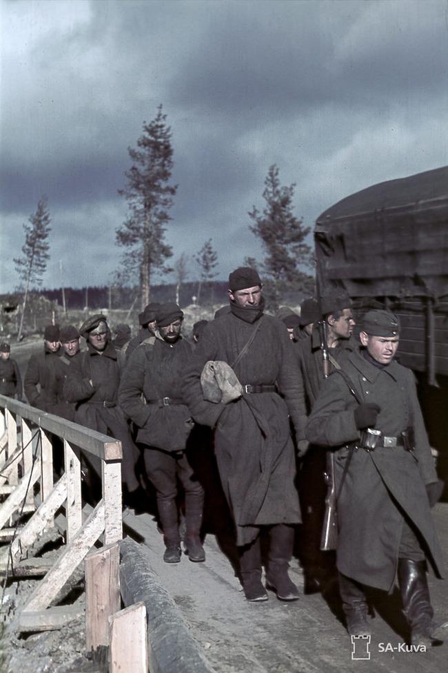 Союз двух свастик. Финляндия, Великая Отечественная война, Маннергейм, Длиннопост