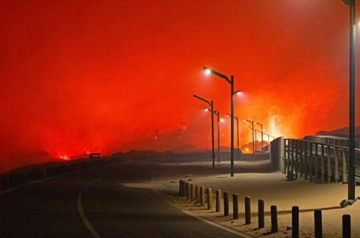Лесной пожар в Португалии. Пожар, Лесные пожары, Португалия, Фотография, Атмосфера, Огонь