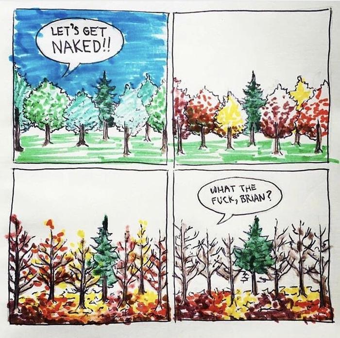 Этот странный Брайан Дерево, Ёлка, Осень