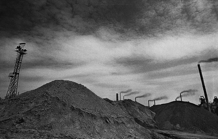 Стерилизация Длиннопост, Фотография, Охрана природы