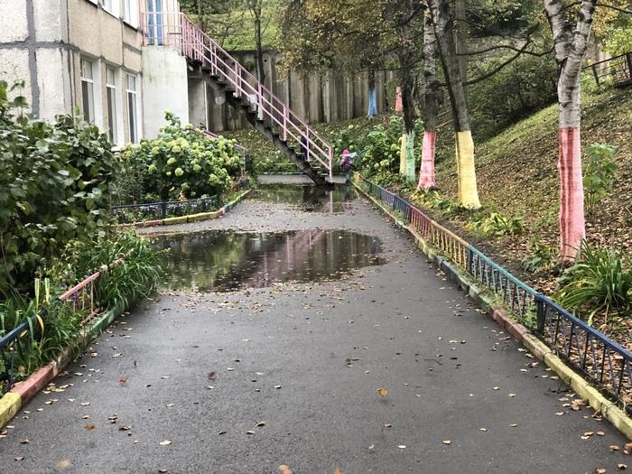 Укладка асфальта в стиле «бассейн» Лужа, Асфальт, Проход