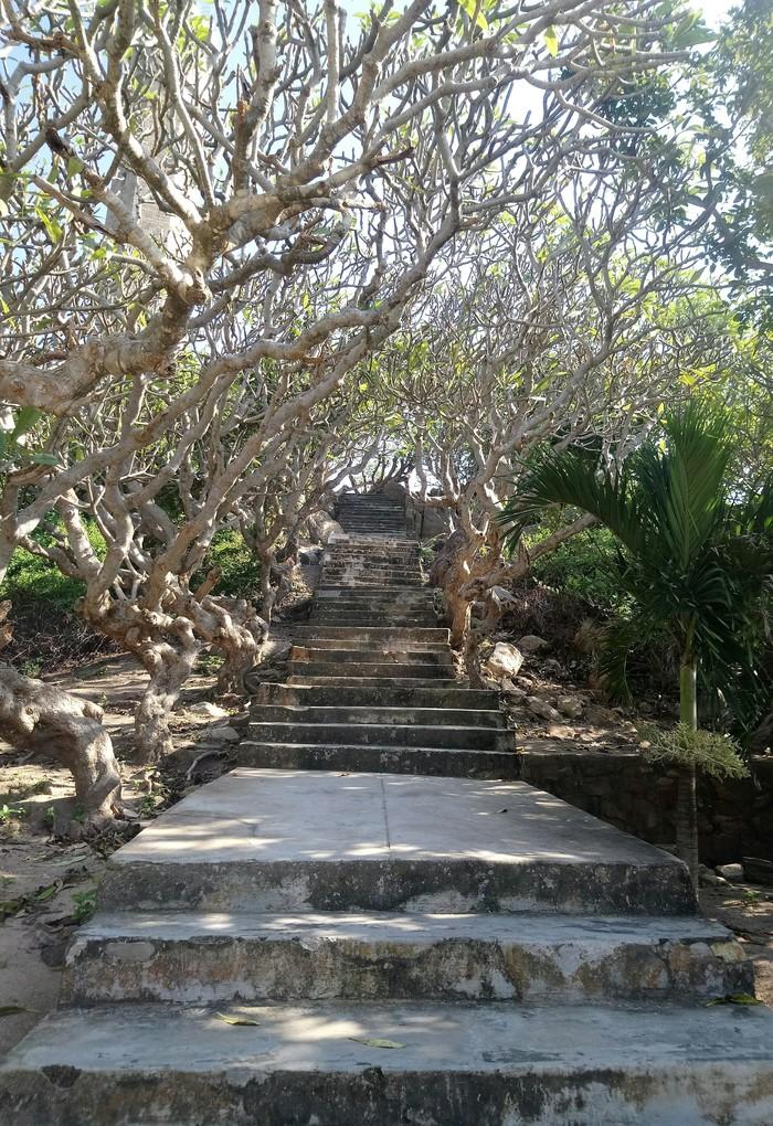 Надо подождать пока стемнеет и посмотреть куда ведёт эта лестница