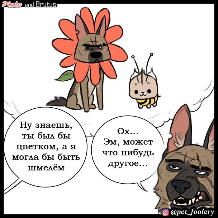Примерка Pet_foolery, Длиннопост, Перевод, Кот, Собака, Друзья, Животные