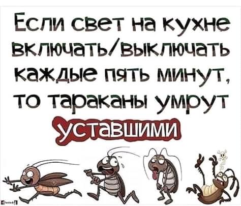Лайфхак Юмор, Картинки, Тараканы