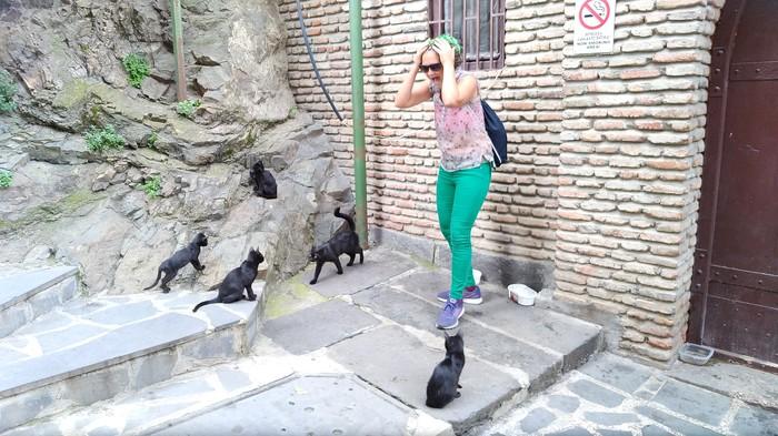 Едрид Мадрид Знакомства, Лига знакомств девушки, Девушки-Лз, 26-30 лет, Мадрид, Испания, Длиннопост