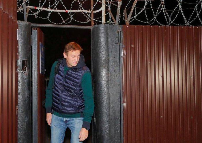 С возвращением. Алексей Навальный, Освобождение, Политика, Фотография, Видео