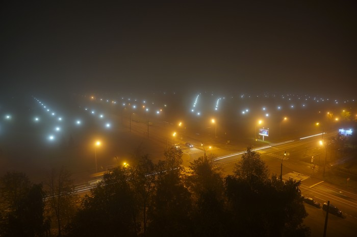 Туманный парк
