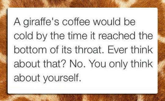 Кофе жирафа остынет к тому времени, как дойдет до конца шеи. Кто-нибудь думал про это? Нет. Вы только о себе и думаете