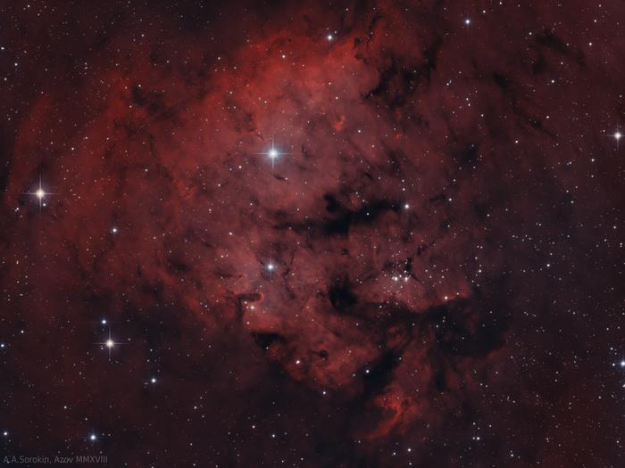 Место, где рождаются звезды. Туманность NGC 7822 Астрофото, Космос, Астрономия, Телескоп, Туманность, Звёзды