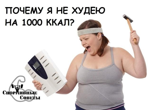 Почему я не худею на 1000 ккал? Спорт, Тренер, Спортивные советы, Похудение, Еда, Диета, Питание, Лень, Длиннопост
